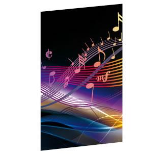 DVD-Einleger (BedruckungPreise)
